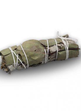 Smudge Stick - White Sage & Eucalyptus 10 cm